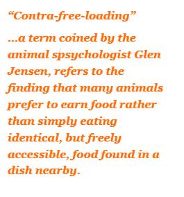 contra free loading